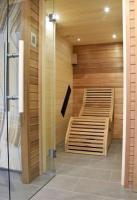 sauna saunapro 11