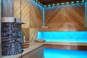 sauna saunapro 6